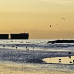 Hastings Beach at Low Tide