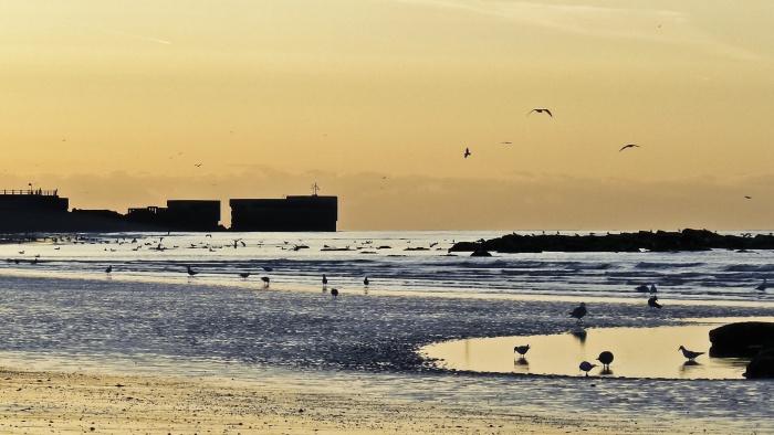 Hastings beach at low tide 1