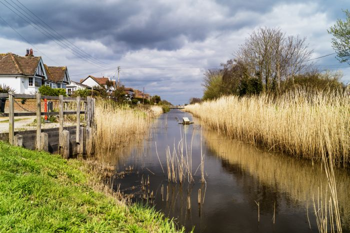 Royal Military Canal